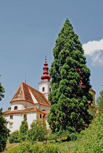 Pfarrkirche Hollenegg